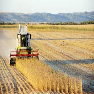 Investitii in exploatatii agricole